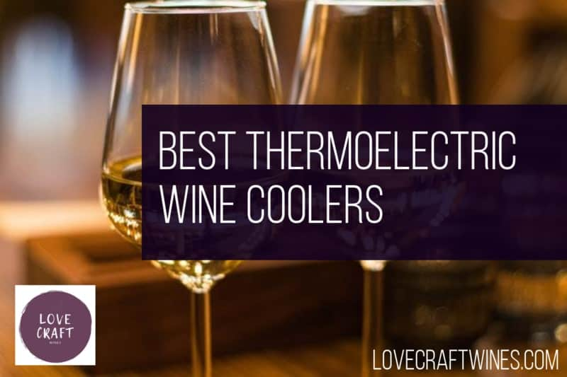 Top 21 Best Thermoelectric Wine Coolers