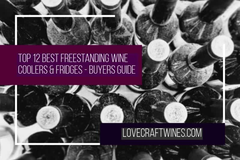 Top 12 Best Freestanding Wine Coolers & Fridges
