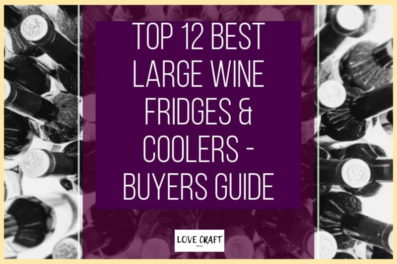 Top 12 Best Large Wine Fridges & Coolers
