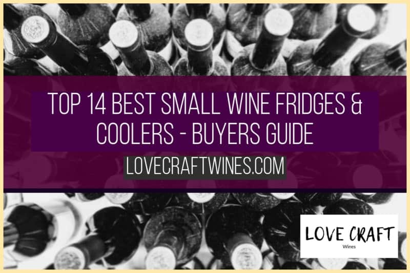 Top 14 Best Small Wine Fridges & Coolers