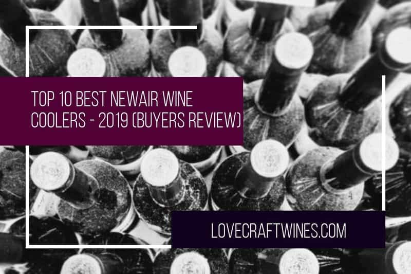 Top 10 Best Newair Wine Coolers & Wine Fridges