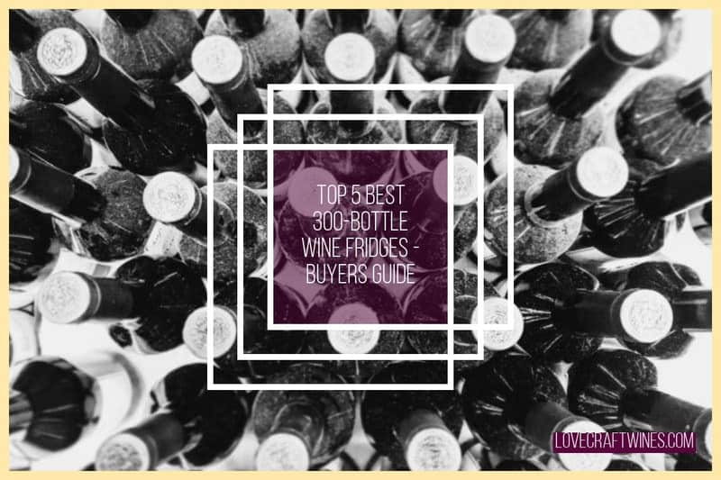 Top 5 Best 300 Bottle Capacity Wine Fridges & Coolers