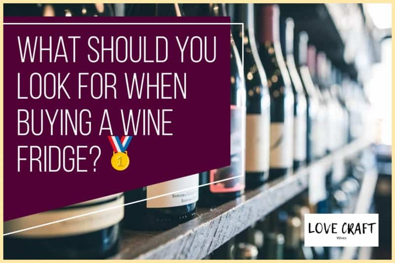 What Should You Look for When Buying a Wine Fridge?