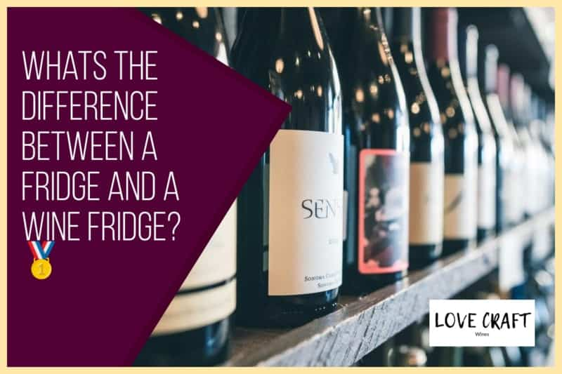 Whats the Difference Between a Fridge and a Wine Fridge?