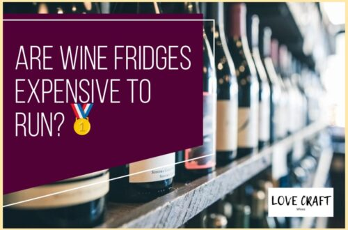 Are Wine Fridges Expensive To Run